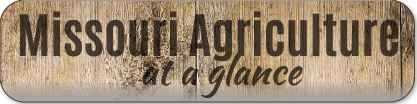 Missouri Agriculture at a Glance image button