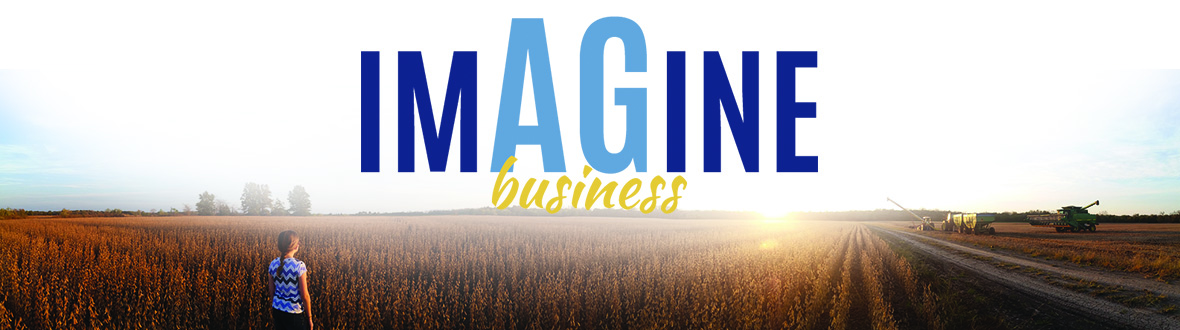 Imagine Business