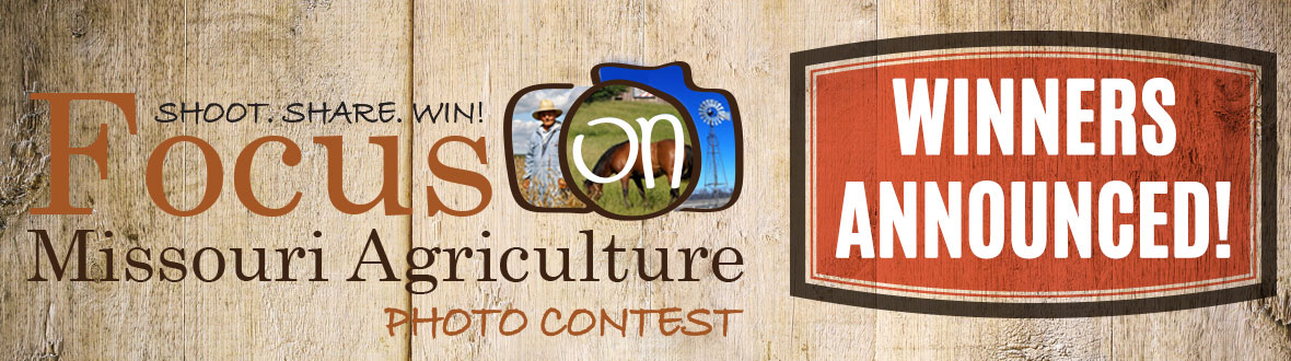 Focus on Missouri Agriculture Photo Contest