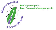 Emerald Ash Borer Program Logo